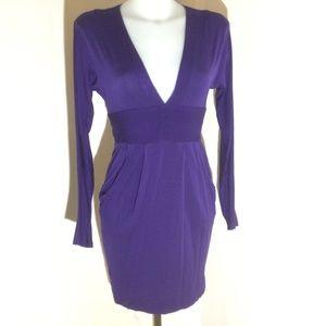 Wilfred purple long sleeve v-neck dress sz: xsmall